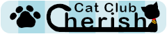 譲渡型保護猫カフェCatClubCherish
